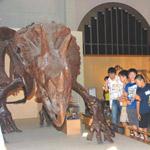 恐竜ナイト_5