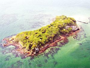 猿島top
